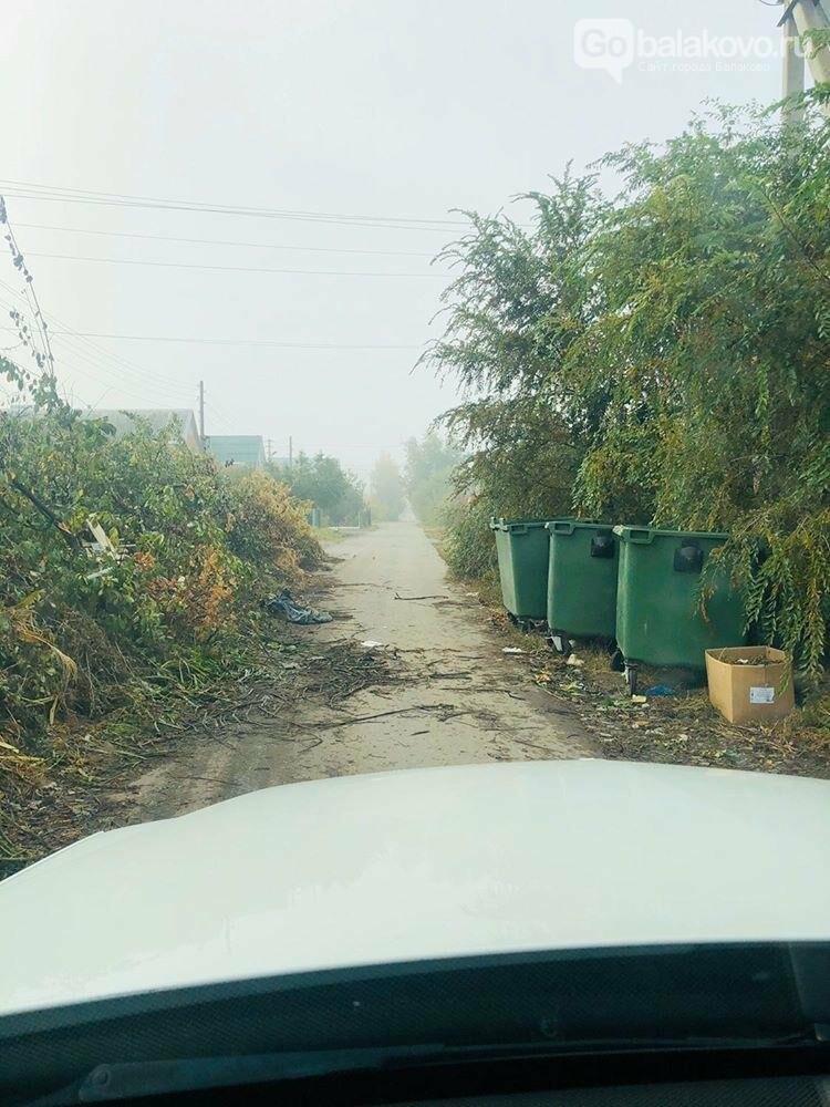 Балаковцы жалуются: улица, на которой расположен музей, утопает в мусоре, фото-1