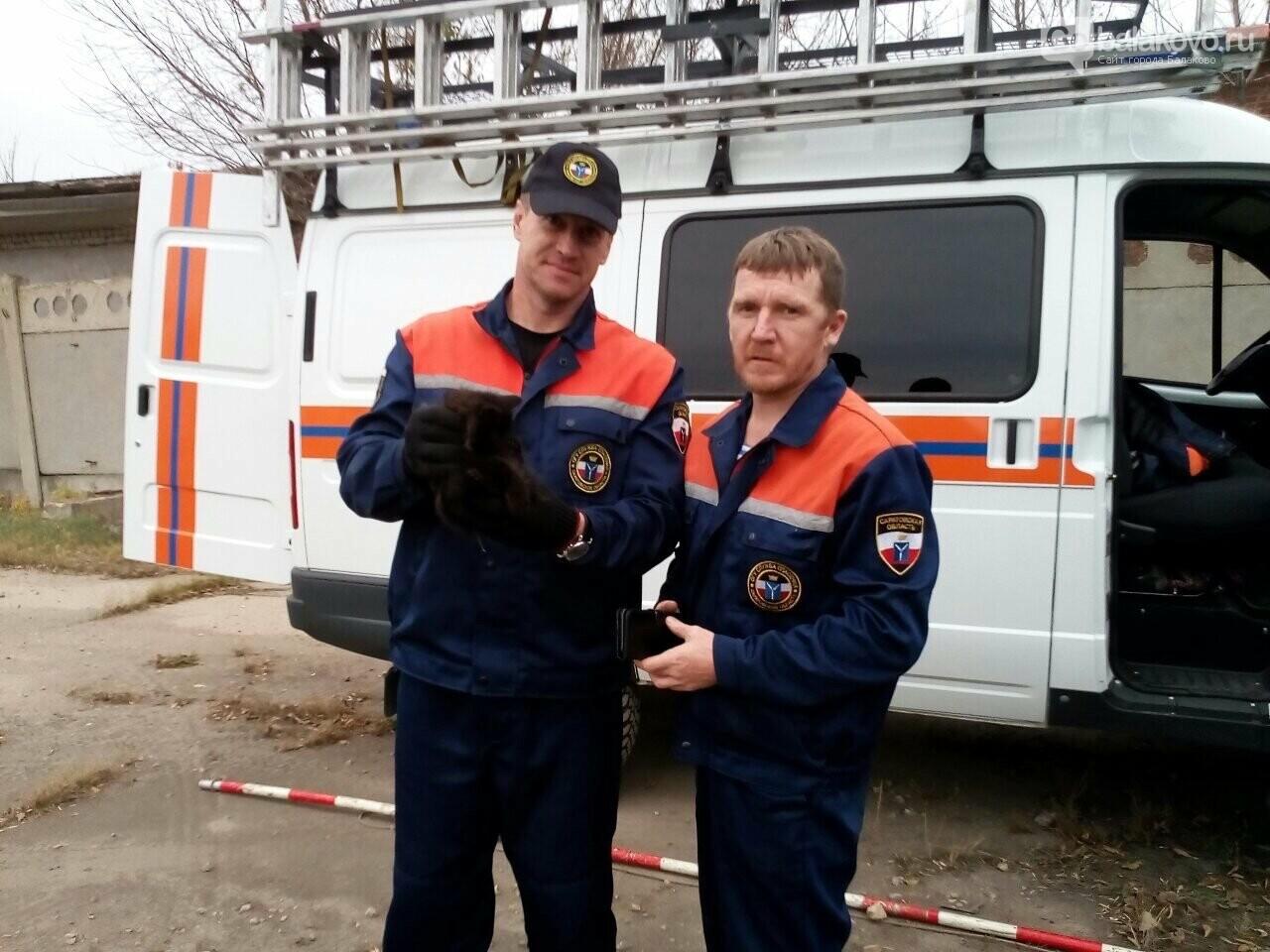 В Балаково спасатели достали котенка из трубы, фото-2