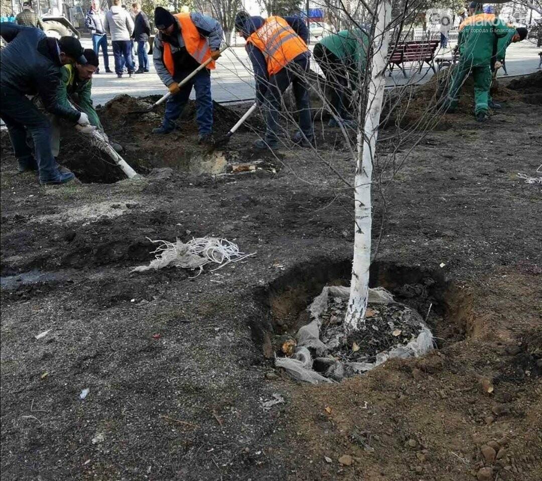 В Балаково началось озеленение территории у Обелиска. Фото, фото-3