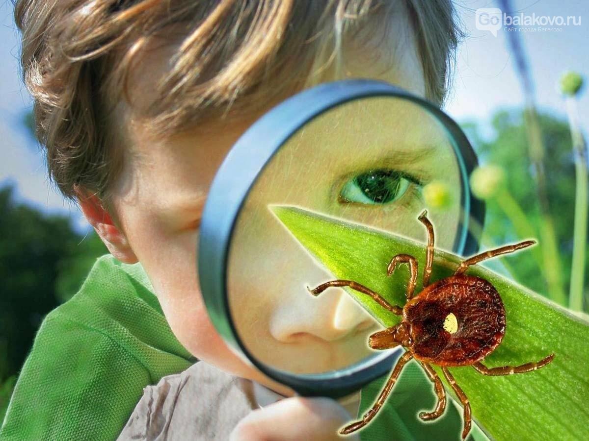 Летние кровососы: как грамотно защитить ребенка, фото-1