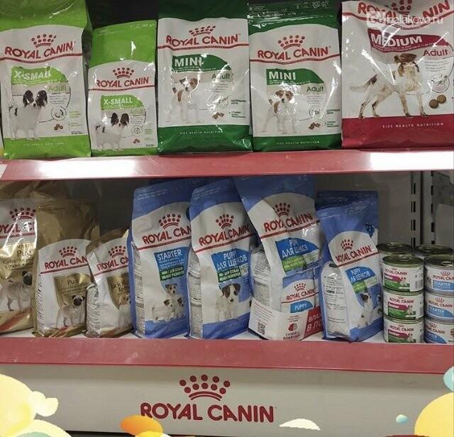 В мире животных новостей с магазином «Лемур», фото-4