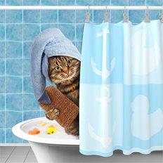 гигиена для кошек