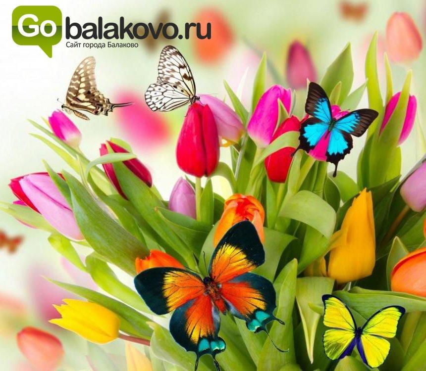 go_603bbfc7d4be6.jpg